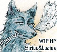 WTF HP Sirius&Lucius 2018 Баннер